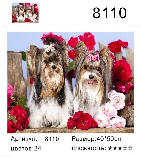 "РД 8110 ""Два йорка"", 40х50 см"