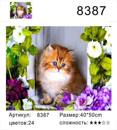 """РД 8387 """"Котенок на окне"""", 40х50 см"""