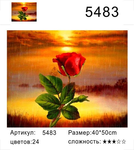 "РН Y5483 ""Роза на закате"", 40х50 см"