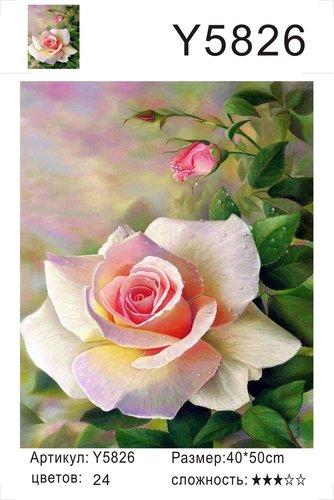 """РН Y5826 """"Роза"""", 40х50 см"""