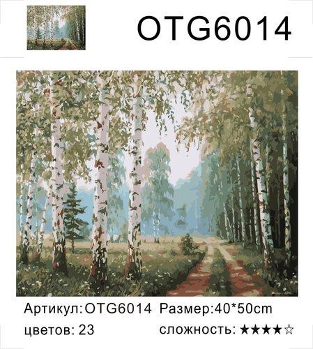"""РН OTG6014 """"Дорога через березовую рощу"""", 40х50 см"""