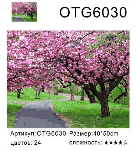 "РН OTG6030 ""Дорожка среди розовых деревьев"", 40х50 см"