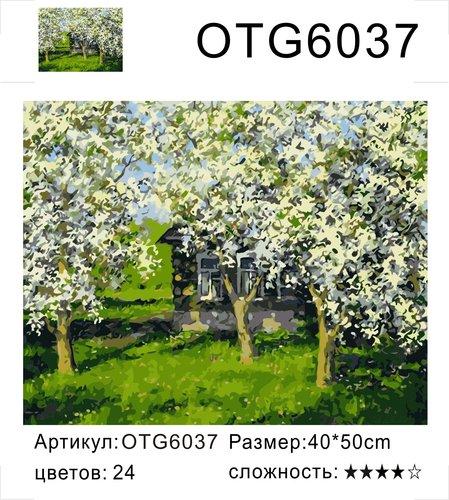 """РН OTG6037 """"Цветущие яблони"""", 40х50 см"""