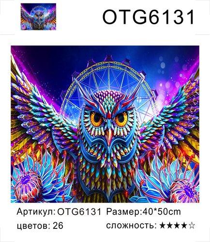 """РН OTG6131 """"Цветной филин"""", 40х50 см"""