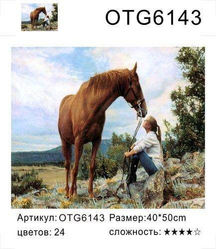 "РН OTG6143 ""Девушка сидит около коня"", 40х50 см"