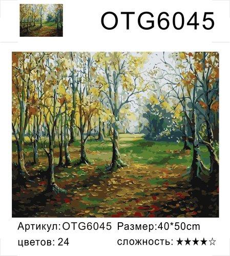 """РН OTG6045 """"Осенний лес"""", 40х50 см"""