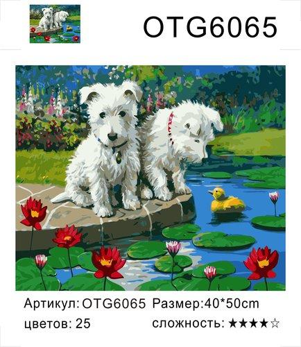 "РН OTG6065 ""Два щенка и кувшинки"", 40х50 см"