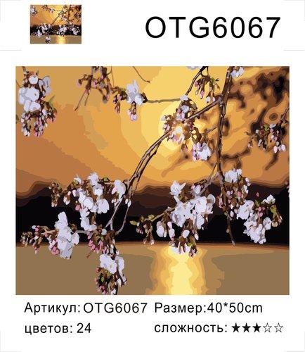 "РН OTG6067 ""Ветка на фоне заката"", 40х50 см"