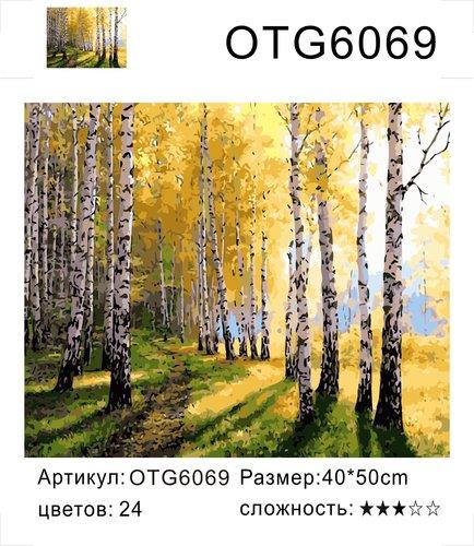 "РН OTG6069 ""Осенние березы"", 40х50 см"