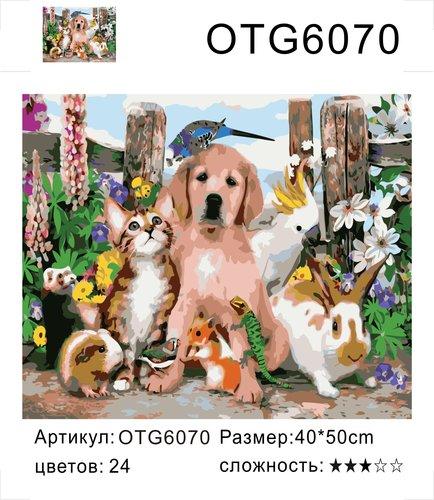 """РН OTG6070 """"Домашние животные"""", 40х50 см"""
