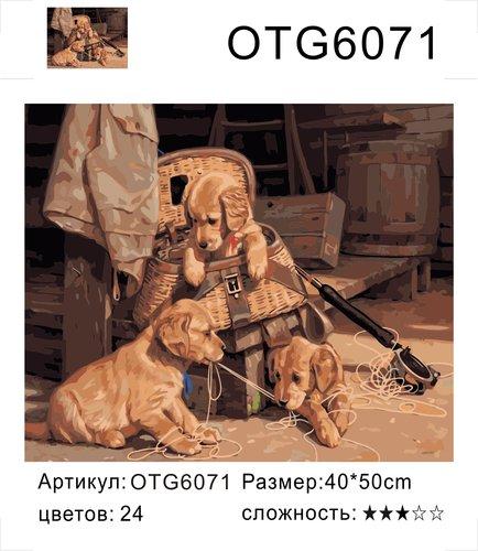 "РН OTG6071 ""Три щенка и удочка"", 40х50 см"