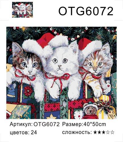 """РН OTG6072 """"Три котенка в красных шапках"""", 40х50 см"""