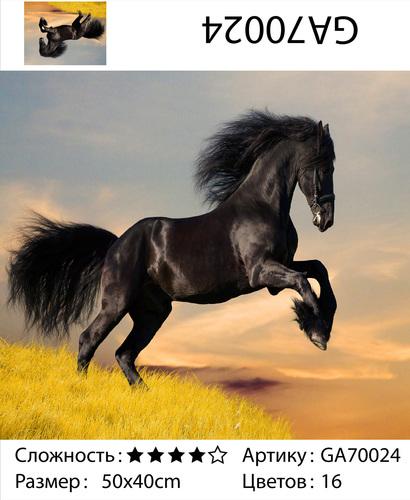 """АМ45 GA70024 """"Вороной конь"""", 40х50 см"""