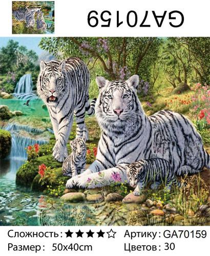"АМ45 GA70159 ""Белые тигры"", 40х50 см"