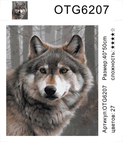 "РН OTG6207 ""Волк"", 40х50 см"