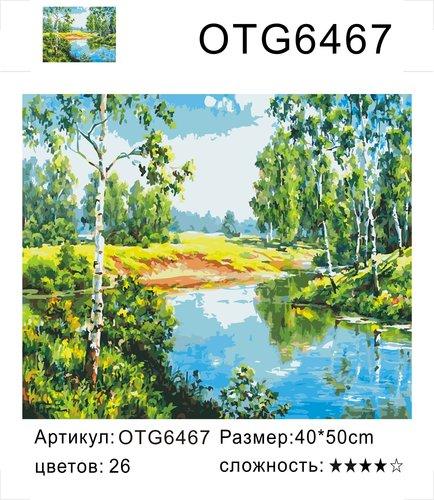 "РН OTG6467 ""Речка, березы"", 40х50 см"