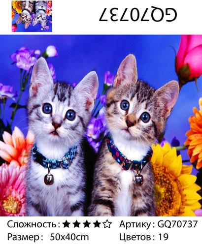 "АЧ GQ70737 ""Два котенка"", 40х50 см"