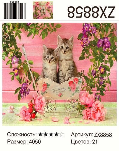 "АМ45 ZX8858 ""Котята у розовой стены"", 40х50 см"