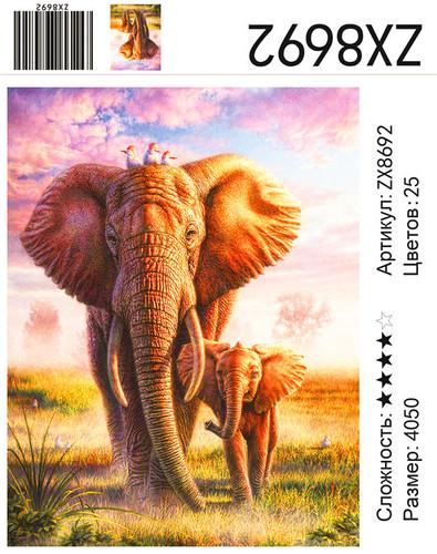 """АМ45 ZX8692 """"Слоны"""", 40х50 см"""