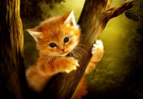 """ВК2045 """"Котенок на дереве"""" 39х48 см"""