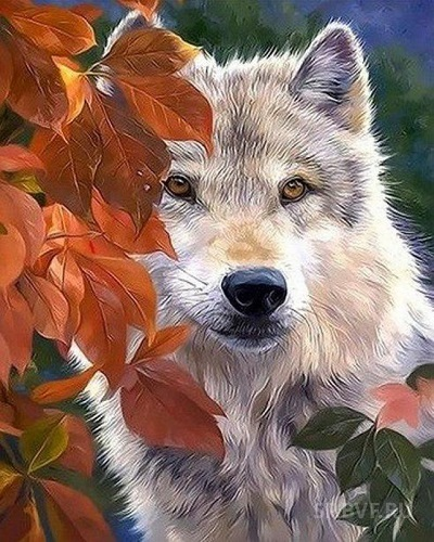 "АМ45 LAG1794 ""Волк"", 40х50 см"