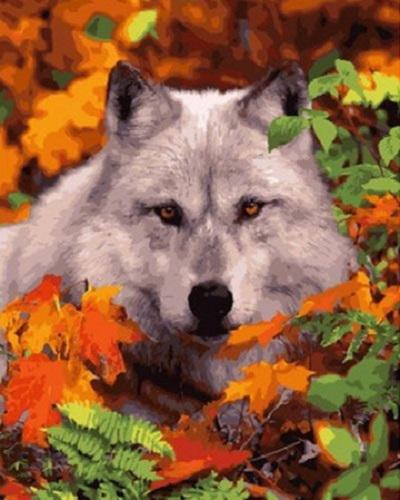 """РН GX29013 """"Волк в осенней листве"""", 40х50 см"""