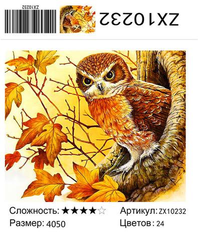 """АМ45 ZХ10232 """"Сова в дупле"""", 40х50 см"""