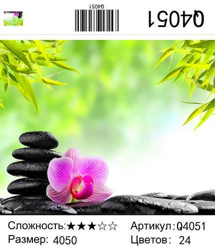РН Q4051 , 40х50 см