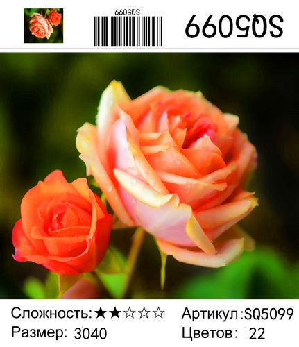 РЗ SQ5099, 30х40 см