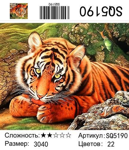 РЗ SQ5190, 30х40 см
