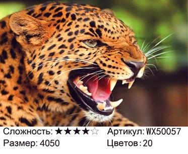АБП45 WX50057, 40х50 см