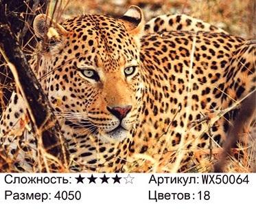 АБП45 WX50064, 40х50 см
