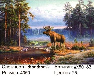 АБП45 WX50162, 40х50 см