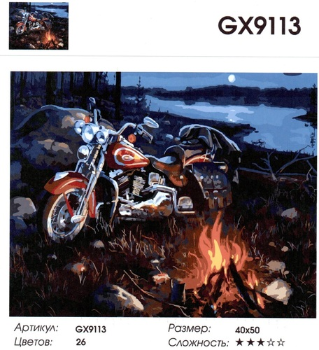 """РН GX9113 """"Мотоцикл у костра"""", 40х50 см"""