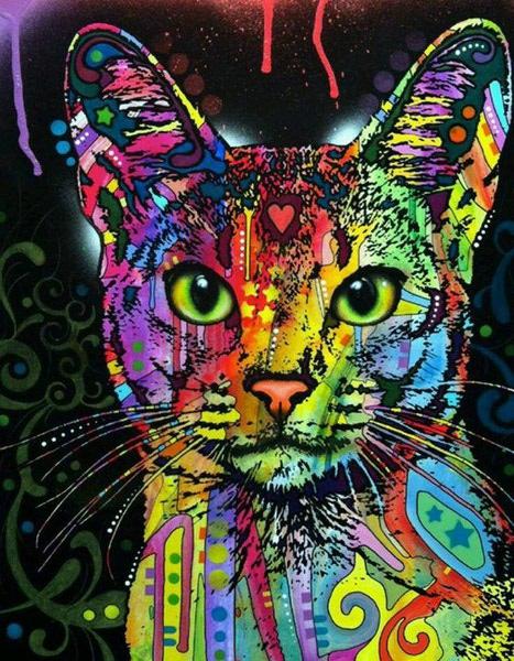 """РН GХ9868 """"Цветной кот"""", 40х50 см"""