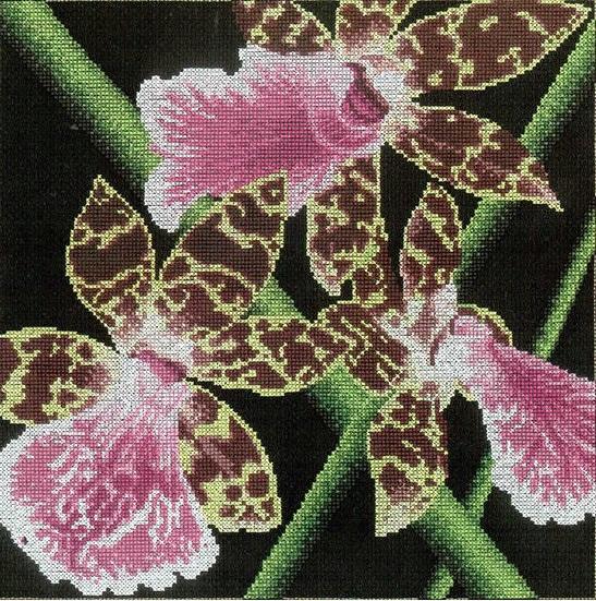 "АРМ FZ059 ""Розовая орхидея"", 40х40 см"