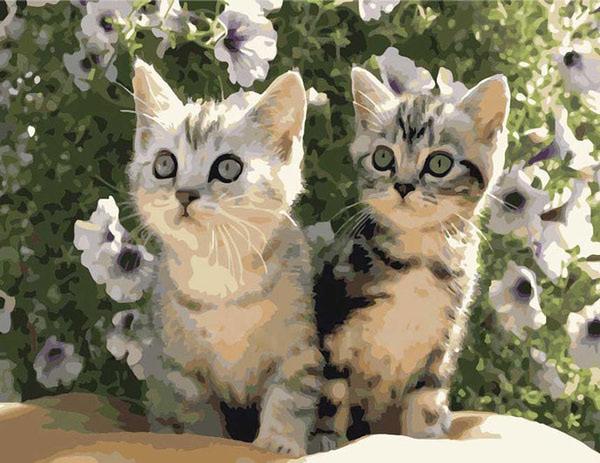 """РН GХ6858 """"Два котенка"""", 40х50 см"""