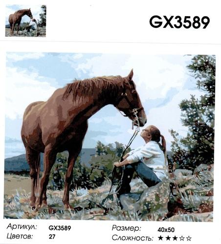 """РН GХ3589 """"Девушка сидит около коня"""", 40х50 см"""