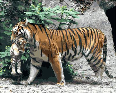 """РН GХ3795 """"Тигрица несет тигренка"""" , 40х50 см"""