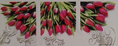 "АМТ N1004 ""Тюльпаны"", 40х50х3"
