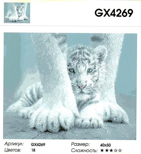 "РН GХ4269 ""Белый тигренок за лапами"" , 40х50 см"