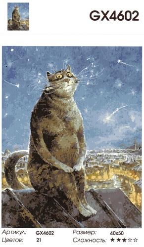 "РН GХ4602 ""Кот на крыше и звездопад"" , 40х50 см"
