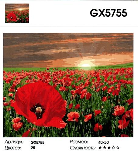 """РН GX5755 """"Маковое поле"""", 40х50 см"""