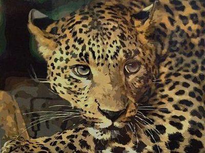 "GX3808 ""Леопард"", 40х50 см"