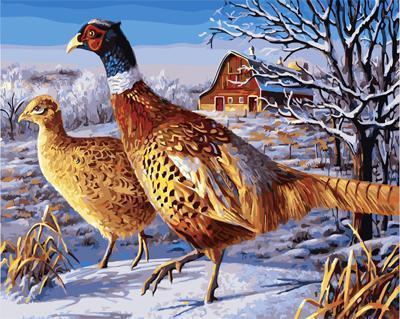 """РН GX21736 """"Пара фазанов на снегу"""", 40х50 см"""