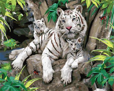 "РН GX21877 ""Бенгальские тигры"", 40х50 см"