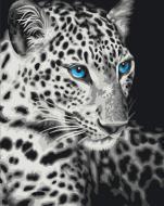 """РН GX22284 """"Белый леопард с голубыми глазами"""", 40х50 см"""
