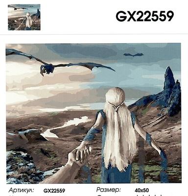 """РН GX 22559 """"Пойдем в долину Драконов"""", 40х50 см"""