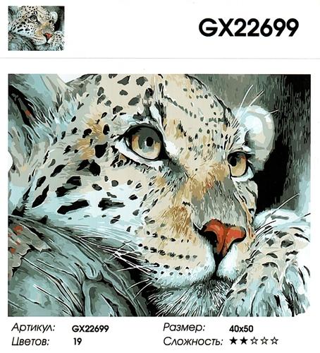 "РН GX 22699 ""Морда снежного барса"", 40х50 см"
