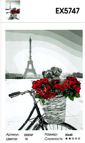 """РЗ EХ5747 """"Велосипед с розами у Эйфелевой башни"""", 30х40 см"""